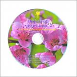 «Образная медитация - 2». Авторская медитация А.А.Козлова.